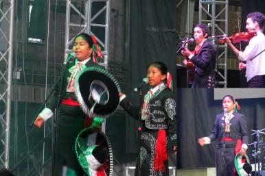 Fiesta de Independencia Mexicana en Nueva York (20)